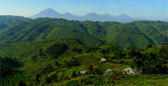 En route to Bwindi Impenetrable Forest, the Congolese Virunga volcanoes  in the distance.